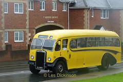 JLJ 403, Leyland, Burlingham, Bournemouth,   P1310178 (LesD's pics) Tags: bus coach isleofwight iow busesbeerfestival2019 jlj403 burlingham leylandtiger