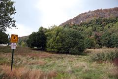 IMG_6990 (dougschneiderphoto) Tags: rocklandcounty newyork hookmountain state park fall autumn usa nature hill mountain