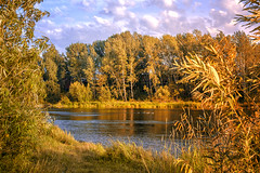 DSCF1333 (sibfoto24) Tags: nature blue night water sky sunset tree clouds sun landscape new river