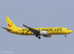TUI (TUI Magic Life Livery) 737-800 D-ATUG (birrlad) Tags: palma pmi spain international airport aircraft airplane aviation airplanes airline airliner airlines airways arrival arriving approach finals landing runway tui tuifly special livery colour scheme decals titles datug magiclife