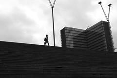On the ridge (pascalcolin1) Tags: paris13 femme woman crête ridge escaliers stairs lampadaire lamppost ciel sky marches steps photoderue streetview urbanarte noiretblanc blackandwhite photopascalcolin 50mm canon50mm canon