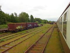 Walton Old Junction Yard (ee20213) Tags: waltonoldjunctionyard ukrailtours warrington disusedrailways dbcargo thecurveyweaver mk1