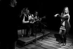 Inmersión Flamenco-239 (paulopomkerner) Tags: apaloseco abandolaos alaire alante alexandrepalma américa apresentação arpegiado artistas brasil cajón cantaor cante cantefestero cantegrande cantejondo cejilla curitiba eventos falsetas flamenco guitarra jondo lugares marcaje palmas paraná pessoas regiãosul sergioel colorao show tablao teatroeniocarvalhotecespaçoculturalfalec teatros temaprincipal