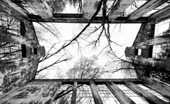 Reclaimed by Nature (Karen_Chappell) Tags: blackandwhite bw ruins old travel ottawa canada quebec gatineau gatineaupark trees building architecture windows fisheye canonef815mmf4lfisheyeusm wideangle sky perspective up geometry geometric branches