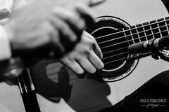 Inmersión Flamenco-52 (paulopomkerner) Tags: apaloseco abandolaos alaire alante alexandrepalma américa apresentação arpegiado artistas brasil cajón cantaor cante cantefestero cantegrande cantejondo cejilla curitiba eventos falsetas flamenco guitarra jondo lugares marcaje palmas paraná pessoas regiãosul sergioel colorao show tablao teatroeniocarvalhotecespaçoculturalfalec teatros temaprincipal