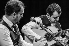 Inmersión Flamenco-67 (paulopomkerner) Tags: apaloseco abandolaos alaire alante alexandrepalma américa apresentação arpegiado artistas brasil cajón cantaor cante cantefestero cantegrande cantejondo cejilla curitiba eventos falsetas flamenco guitarra jondo lugares marcaje palmas paraná pessoas regiãosul sergioel colorao show tablao teatroeniocarvalhotecespaçoculturalfalec teatros temaprincipal