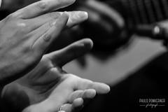 Inmersión Flamenco-88 (paulopomkerner) Tags: apaloseco abandolaos alaire alante alexandrepalma américa apresentação arpegiado artistas brasil cajón cantaor cante cantefestero cantegrande cantejondo cejilla curitiba eventos falsetas flamenco guitarra jondo lugares marcaje palmas paraná pessoas regiãosul sergioel colorao show tablao teatroeniocarvalhotecespaçoculturalfalec teatros temaprincipal