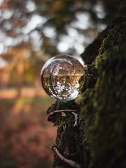 Lensball 2 (Patryk Rejdych) Tags: polska poland forest park outside sonyrx100 sony bokeh nature jesien autumn lensball lens glass