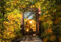 Third Iron (Wheelnrail) Tags: conway scenic railway train trains emd gp402 locomotive high hood fall autumn color gold bridge rural new hampshire england third iron trestle csrr
