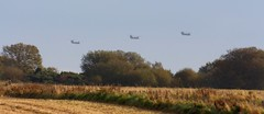 Off home (calzer) Tags: formation helicopters choppers lossiemouth onslaught ch47 chinooks low flight level autumn trees
