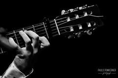 Inmersión Flamenco-54 (paulopomkerner) Tags: apaloseco abandolaos alaire alante alexandrepalma américa apresentação arpegiado artistas brasil cajón cantaor cante cantefestero cantegrande cantejondo cejilla curitiba eventos falsetas flamenco guitarra jondo lugares marcaje palmas paraná pessoas regiãosul sergioel colorao show tablao teatroeniocarvalhotecespaçoculturalfalec teatros temaprincipal