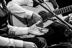 Inmersión Flamenco-71 (paulopomkerner) Tags: apaloseco abandolaos alaire alante alexandrepalma américa apresentação arpegiado artistas brasil cajón cantaor cante cantefestero cantegrande cantejondo cejilla curitiba eventos falsetas flamenco guitarra jondo lugares marcaje palmas paraná pessoas regiãosul sergioel colorao show tablao teatroeniocarvalhotecespaçoculturalfalec teatros temaprincipal
