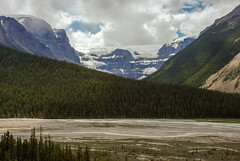 Icefield Parkways, Jasper NP (euansco) Tags: icefield parkway jasper banff national park glacier ice snow summer athabasca wild nature adventure