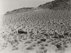 Desert range with man and automobile. California desert. (SDNHM-Library) Tags: usulyssessgrantiv18931977 geologist paleontologist cadillac automobiles sanbernardinocounty california deserts larreamexicana creosotebush