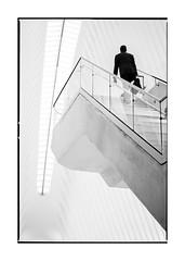 arrival (Nico Geerlings) Tags: ngimages nicogeerlings nicogeerlingsphotography oculus wtc lowermanhattan nyc usa newyorkcity blackandwhite calatrava worldtradecenter architecture streetphotography