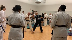 Séminaire avec Hanshi Albert Mady - Rochester NY USA - Vendredi 18 octobre 2019