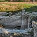 Ruins of Transylvanaian Bastion 033cHDR_TmBalM