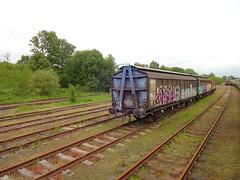 Walton Old Junction Yard (ee20213) Tags: thecurveyweaver disusedrailways warrington ukrailtours cargowagon waltonoldjunctionyard