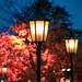 Cathedral lightposts