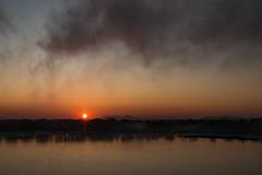 River Misty Mornings (langdon10) Tags: montreal morning quebec stlawrenceriver sunrise water fog mist shoreline sun