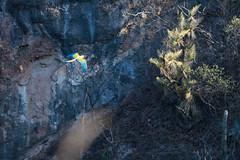 Al vuelo (ilustra.vag) Tags: ave bird guacamaya barranca barranco naturaleza paisaje telefoto roca desierto aves vuelo alas volando oaxaca mexico bello