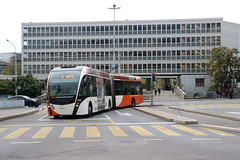 2019-10-18, Genève, Délices (Fototak) Tags: trolleybus filobus obus genève switzerland geneva vanhool exquicity tpg ligne7 1623