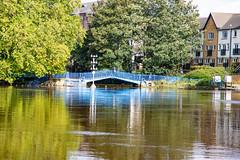 untitled-9 (daviemoran1) Tags: riverouze bridge flood reflection water trees york city yorkshire