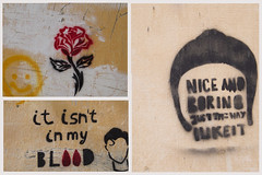Nice and Boring (AlainC3) Tags: artderue streetart györ hongrie hungarie stencil pochoir nikond7500