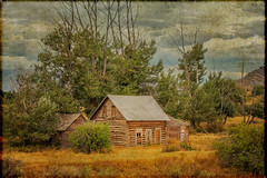 A Log House (KPortin) Tags: htt dilapidated deteriorated decay abandonedhouse abandoned texture lenabemanna idaho