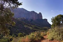 Fall Colors in Zion Kolob Canyon, Utah, USA (swissuki) Tags: fall canyon cliffs colors zion national nature park kolob mountain landscape largelandscape ut usa utah
