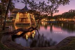 D69_1328_Optimizer (brook1979) Tags: 台灣 台中市 公園 涼亭 樹 水 湖 倒影 燈光 建築 湖心亭 夕陽 夜景 晨昏 taiwan taichung park reflection lake night sunset