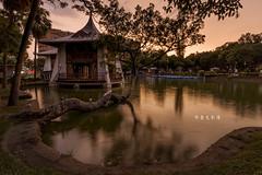 D69_1311 (brook1979) Tags: 台灣 台中市 公園 涼亭 樹 水 湖 倒影 燈光 建築 湖心亭 夕陽 夜景 晨昏 taiwan taichung park reflection lake night sunset