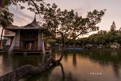 D69_1308 (brook1979) Tags: 台灣 台中市 公園 涼亭 樹 水 湖 倒影 燈光 建築 湖心亭 夕陽 夜景 晨昏 taiwan taichung park reflection lake night sunset