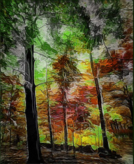 Fall Colors (Rusty Russ) Tags: fall colors tree forest wow colorful day digital flickr country bright happy colour scenic america world sunset sky red nature blue white green art light sun cloud park landscape summer old new photoshop google bing yahoo stumbleupon getty national geographic creative composite manipulation hue pinterest blog twitter comons wiki pixel artistic topaz filter on1 sunshine image reddit tinder russ seidel facebook timber unique unusual fascinating