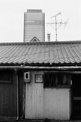 191021_2_503 (taocoffee) Tags: film monochrome foma400 nikonfm2 ai3528