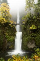 Multnomah Falls in the Columbia Gorge, Oregon, October 2019 (Gary L. Quay) Tags: multnomahfalls oregon columbiagorge waterfall pacificnorthwest nature scenic travel destination tourism fall autumn agryquay nikon rain golden foliage wonder