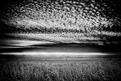 Sandwich (Alfred Grupstra) Tags: blackandwhite nature landscape outdoors ruralscene nopeople scenics nonurbanscene monochrome field weather grass dark season storm sky meadow blackcolor colorimage beautyinnature 981