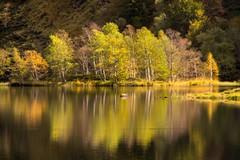 Étang de Lers (Ariège) (PierreG_09) Tags: ariège pyrénées pirineos couserans occitanie midipyrénées montagne lac couleurs automne reflet lers étang
