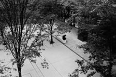 191021_2_501 (taocoffee) Tags: film monochrome foma400 nikonfm2 ai3528