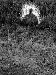 Self (Tuttoleo) Tags: tuttoleo streetphoto streetphotography street streetphotographynow challengerstreets visual art streetphotographers capturestreets streetstyle people streetphotos capture igersitalia igerstoscana igersprato igersstreet photography lifeisstreet ourstreets streetsacademy todaystreet fiafers fiaferstoscana fujifilm canpubphoto self selfportrait myself