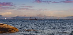 """AMENCER EN EL PARAÍSO""  #photooftheday #photography #nature #paisajes #landscape #colors #naturaleza #500px ##saffsunset #pentaxkx #expressión #imagination #vilagarciadearousa #sea #water #boats #pontevedra #galicia #ailladearousa #riadearousa #riasbaixa (saffsunset) Tags: photooftheday riadearousa pentaxkx vgaviva colors sea riasbaixas galicia amazing naturaleza digitalphotography visitaosalnés paisajes galiciavisión visitosalnes nature saffsunset galiciamaxica boats imagination ailladearousa water pontevedra disfrutargalicia expressión vilagarciadearousa galiciapasion 500px photography landscape"
