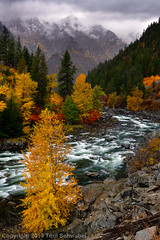 Prelude to Winter (pdxsafariguy) Tags: leavenworth pacificnorthwest nature autumn fall water river scenic landscape rock usa rapids forest trees washington wenatchee canyon cloud tumwatercanyon whitewater fog mountains foliage rocks snow seasons tomschwabel