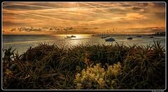 Antibes_Provence-Alpes-Côte d'Azur_France_Méditerranée (ferdahejl) Tags: antibes provencealpescôtedazur france méditerranée dslr canondslr canoneos400ddigital