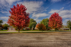 Two of a Kind (kendoman26) Tags: hdr nikhdrefexpro2 autumn autumncolors fall fallcolors morrisillinois sonyalpha sonyphotographing sonya6000 selp1650