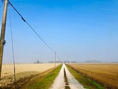 iph8233 (gzammarchi) Tags: italia paesaggio natura pianura campagna ravenna borgomontone strada stradabianca palo cavo campoarato