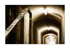 Upside Handrail (Thomas Listl) Tags: thomaslistl color 100mm focus vanishingpoint passage underground lowlight handrail rail lines diagonal light lamp lamps urban würzburg tunnel tungsten mood