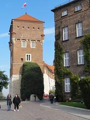 Cracovia-116 (danvartanian) Tags: cracovia krakow poland polonia