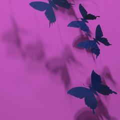 metallic butterflies and shadows (msdonnalee) Tags: butterfly shadow schatten colorfx sombra shadows magenta ombre ombra metallicsculpture artdigital netartii