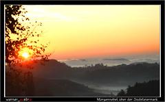 10-19 6742A_Südsteiermark (werner_austria) Tags: steirischeweinstrase südsteiermark wein landschaft schönheit weintrauben weinberge genus nebel morgennebel sonne