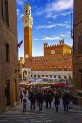 Siena - Piazza del Campo - Square del Campo (Eugenio GV Costa) Tags: approvato siena piazza campo toscana italia square tuscany italy